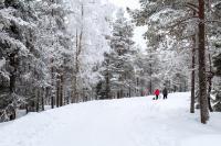 Ounasvaara Hiking