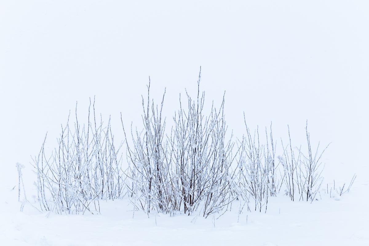Lapland Minimalism